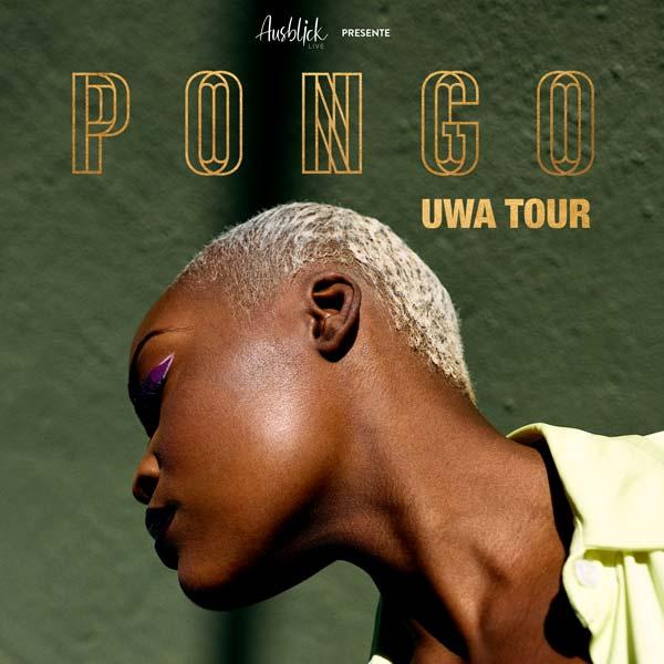 Pongo head